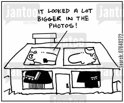 estate agents cartoon humor: 'It looked a lot bigger in the photos.'