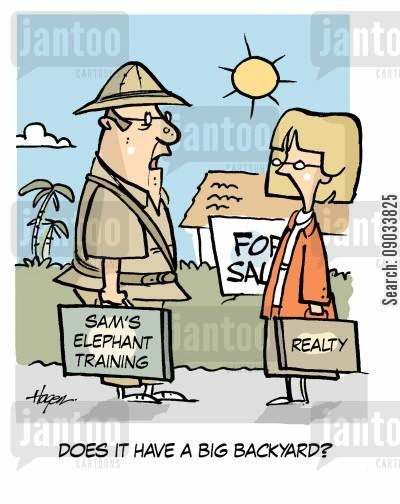 back yard cartoon humor: 'Does it have a big backyard?' - Sam's Elephant Training.