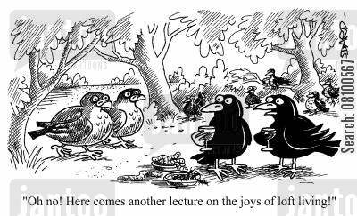 loft living cartoon humor: Oh no! Here comes another lecture on the joys of loft living!