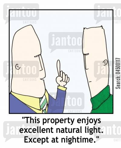 estate agencies cartoon humor: 'This property enjoys excellent natural light. Except at nightime.'
