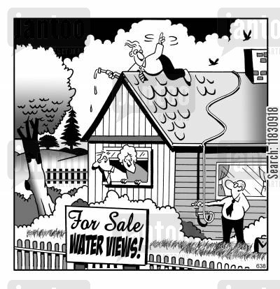 house buyers cartoon humor: For Sale: Water Views.