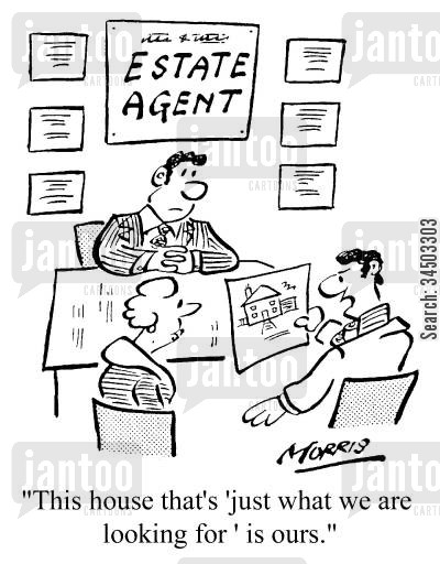 dream home cartoon humor: Estate Agent - This house that's 'just what we are looking for' is ours