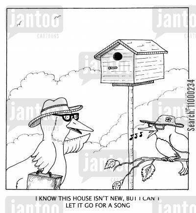 birdhouse cartoon humor: I know this house isn't new, but I can't let it go for a song.