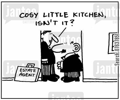 cosy kitchen cartoon humor: 'Cosy little kitchen, isn't it?'