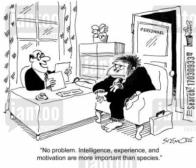 new hire cartoon humor: 'No problem. Intelligence, experience, and motivation are more important than species.'
