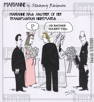 bridesmaid cartoon humor: 'I'd rather marry you,'