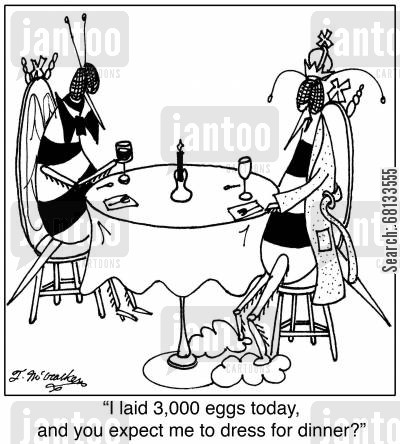 queen bees cartoon humor: 'I laid 3,000 eggs today, and you expect me to dress for dinner?'