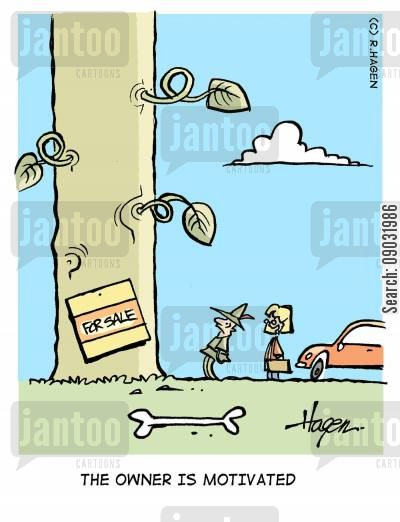 home owners cartoon humor: 'The owner is motivated.'