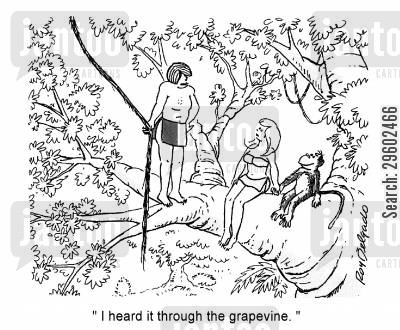 dater cartoon humor: 'I heard it through the grapevine.'