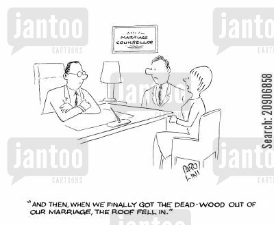 marriage problems cartoon humor: 'And then when we finally got the dead-wood out of our marriage, the roof fell in.'
