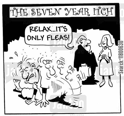 marriage difficulties cartoon humor: Relax...it's only fleas!