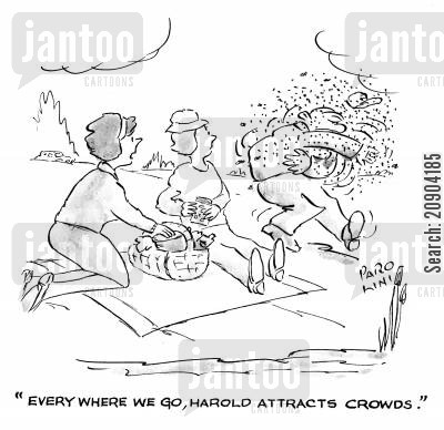 swarm of bees cartoon humor: 'Everywhere we go, Harold attracts crowds.'