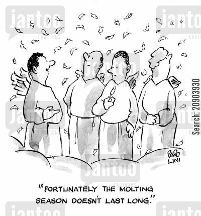 molting cartoon humor: 'Fortunately the molting season doesn't last long.'