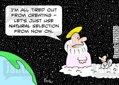natural selections cartoon humor: 'I'm all tired out from creating - let's just use NATURAL selection from now on.'