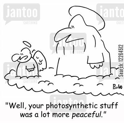 creation myths cartoon humor: 'Well, your photosynthetic stuff was a lot more peaceful.'