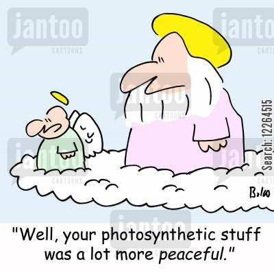 human lives cartoon humor: 'Well, your photosynthetic stuff was a lot more peaceful.'