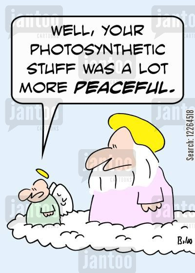 photosynthetic cartoon humor: 'Well, your photosynthetic stuff was a lot more peaceful.'