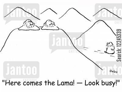 dalai lama cartoon humor: 'Here comes the Lama! -- Look busy!'