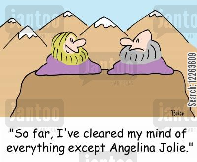 mountain top cartoon humor: 'So far, I've cleared my mind of everything except Angelina Jolie.'