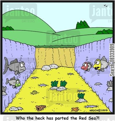 parting cartoon humor: 'Who the heck has parted the Red Sea?!'