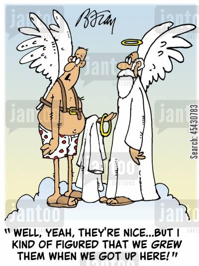 icarus cartoon humor: 'Well, yeah, they're nice...but I kind of figured that we grew them when we got up here?'