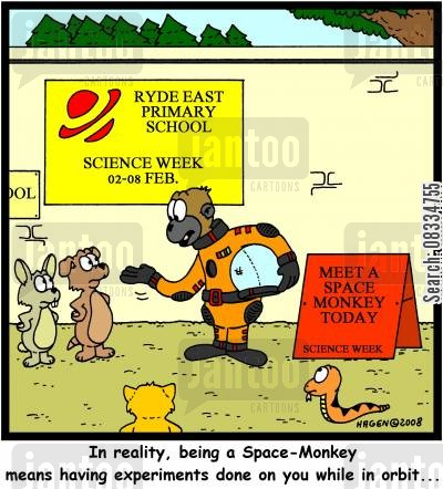 space monkey cartoon humor: 'In reality, being a Space-Monkey means having experiments done on you while in orbit...'