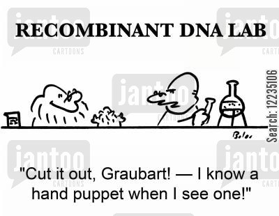 glove puppet cartoon humor: 'Cut it out, Graubart! -- I know a hand puppet when I see one!'