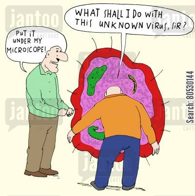 medical scientists cartoon humor: 'Put it under my microscope!'
