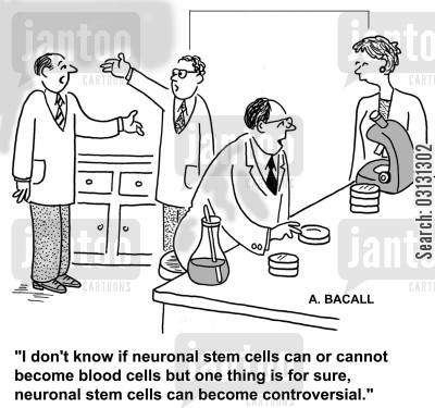 stem cell cartoon humor: I don't know if neuronal stem cells can or cannot become blood cells but one thing is for sure, neuronal stem cells can become controversial.