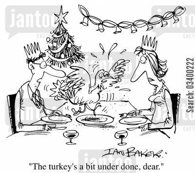 christmas meal cartoon humor: The Turkey's a bit underdone dear.