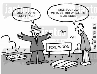 fire wood cartoon humor: You told me to get rid of all the dead wood!