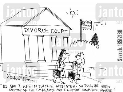 materialism cartoon humor: Divorce Court