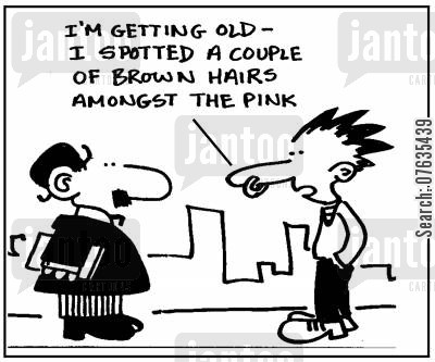 grey hairs cartoon humor: I'm getting old, I spotted a couple of brown hairs among the punk.