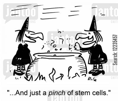 stem cell cartoon humor: '...And just a pince of stem cells.'
