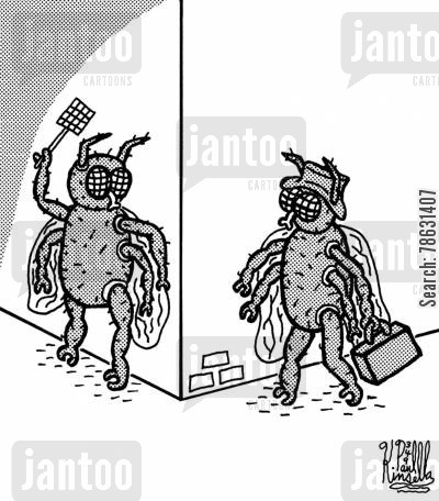 robbery cartoon humor: Fly mugger mugging with fly swatter.