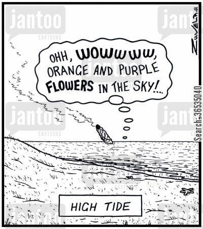 rise cartoon humor: High Tide: 'Ohh,WOWWWW,orange and purple FLOWERS in the sky!...'