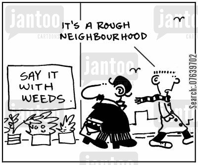 flower displays cartoon humor: 'It's a rough neighbourhood.'