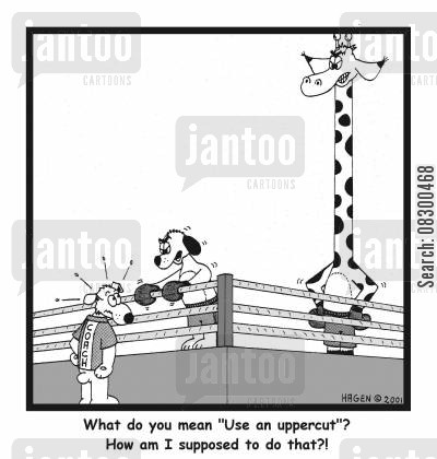 boxing coaches cartoon humor: What do you mean 'Use an uppercut'...?!