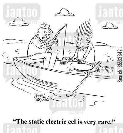 static electricity cartoon humor: The static electric eel is very rare.