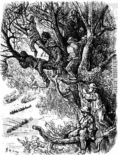 rower cartoon humor: Oxford-Cambridge Boat Race,1870-Boys Observing from Trees