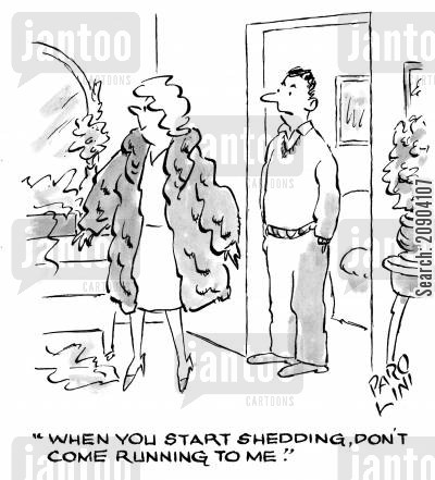furr coats cartoon humor: 'When you start shedding, don't come running to me.'
