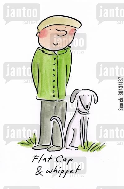 tweed cartoon humor: Flat Cap and whippet