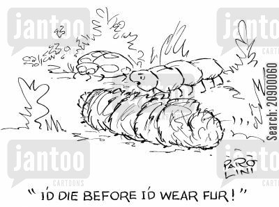 animal furs cartoon humor: 'I'd die before I'd wear fur!'