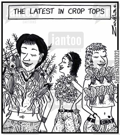catwalk cartoon humor: The latest in crop tops