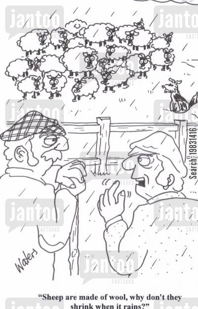 sheep farmer cartoon humor: 'Sheep are made of wool, why don't they shrink when it rains?'
