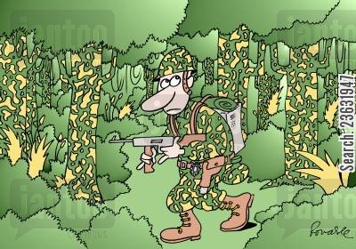 camoflaged cartoon humor: Camouflage.