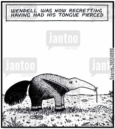 anteater cartoon humor: Wendell was now regretting having had his Tongue pierced.