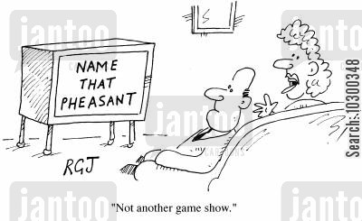 another one cartoon humor: Not another game show