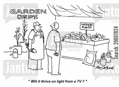 indoor plants cartoon humor: 'Will it thrive on light from a TV?'