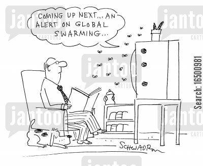 alerts cartoon humor: Coming up next...an alert on global swarming...